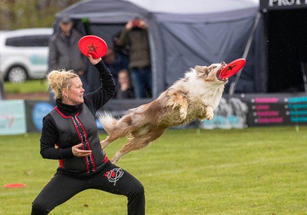 איך עושים ספורט ביחד עם הכלב?
